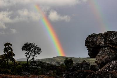 rainbow-509500_1280 (1)